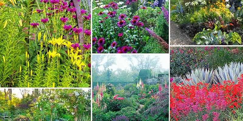 Living gardens, gardening, workshop, nature, home, living,